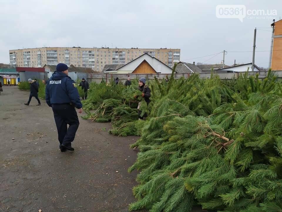 Лубенські поліцейські  провели профілактичні заходи з метою попередження незаконної порубки та реалізації хвойних насаджень, фото-1