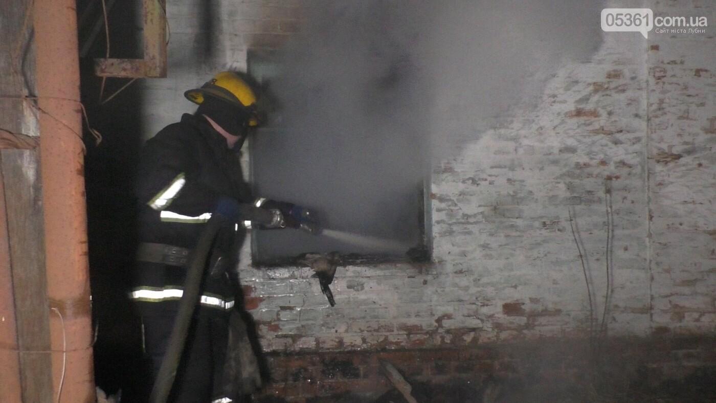 У Лубнах внаслідок пожежі в будинку жінка потрапила до реанімації, фото-1