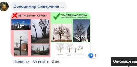 Кронування в Лубнах - маскування для знищення здорових дерев, фото-1
