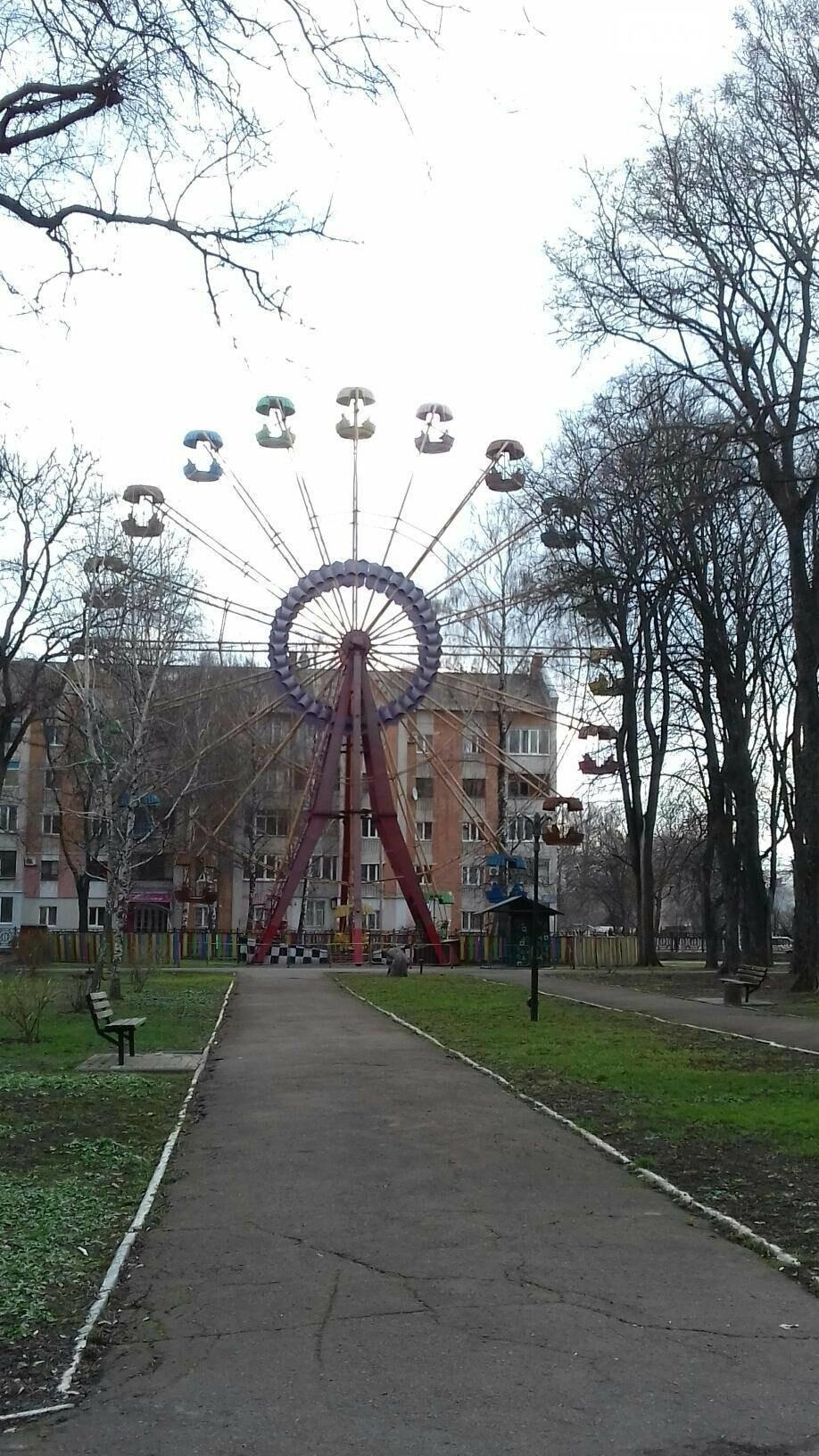 Лубенський парк оживає, фото-2