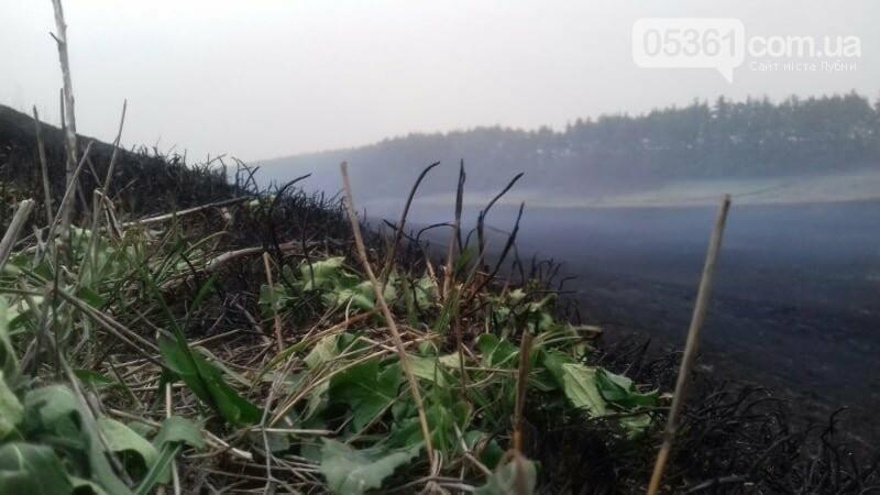 Масштабна пожежа в Лубенському районі, фото-8