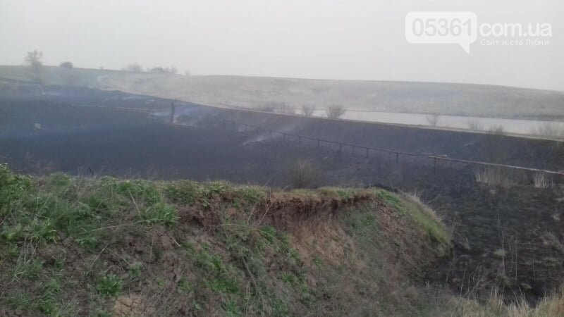 Масштабна пожежа в Лубенському районі, фото-7