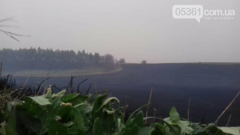 Масштабна пожежа в Лубенському районі, фото-5