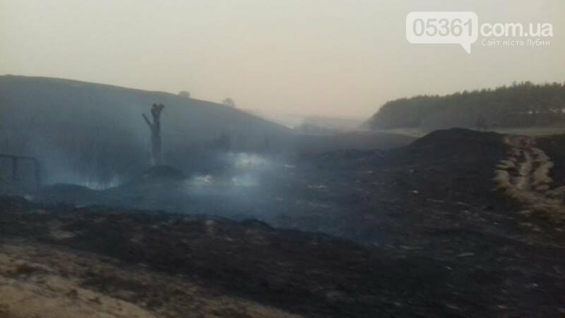 Масштабна пожежа в Лубенському районі, фото-6
