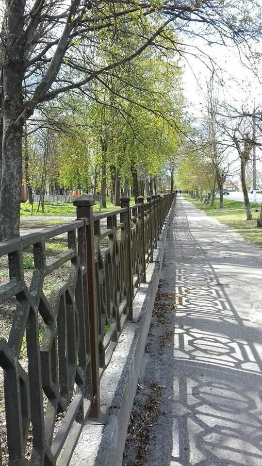 Моє прекрасне місто Лубни, фото-5