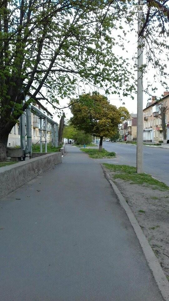 Моє прекрасне місто Лубни, фото-6