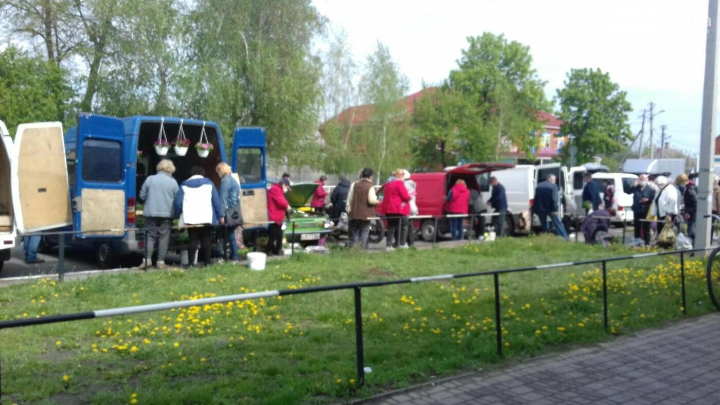 Сьогодні починає роботу ринок у Лубнах, фото-9
