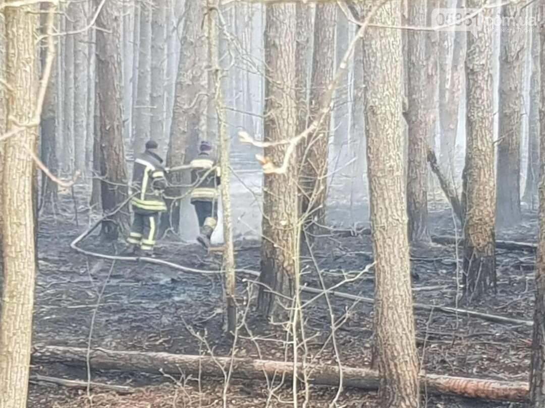 Лубенський пожежник Вадим Сердюк розповідає про ліквідацію пожежі в Чорнобильській зоні, фото-14