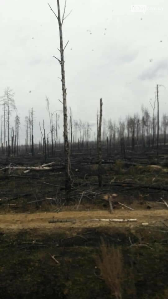 Лубенський пожежник Вадим Сердюк розповідає про ліквідацію пожежі в Чорнобильській зоні, фото-5