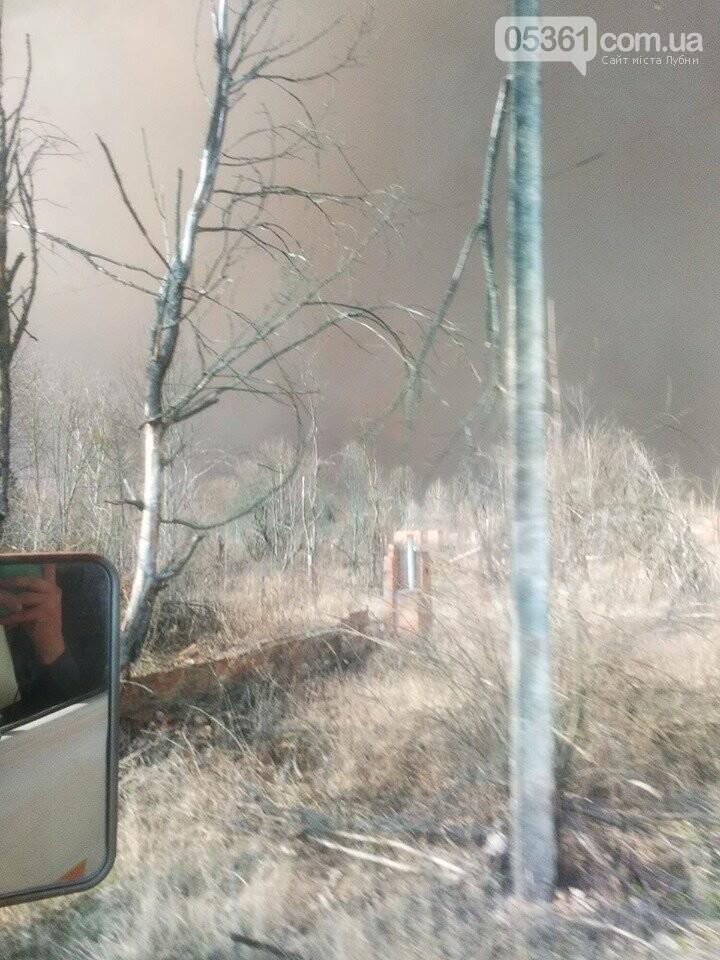 Лубенський пожежник Вадим Сердюк розповідає про ліквідацію пожежі в Чорнобильській зоні, фото-16