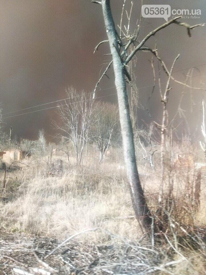 Лубенський пожежник Вадим Сердюк розповідає про ліквідацію пожежі в Чорнобильській зоні, фото-1