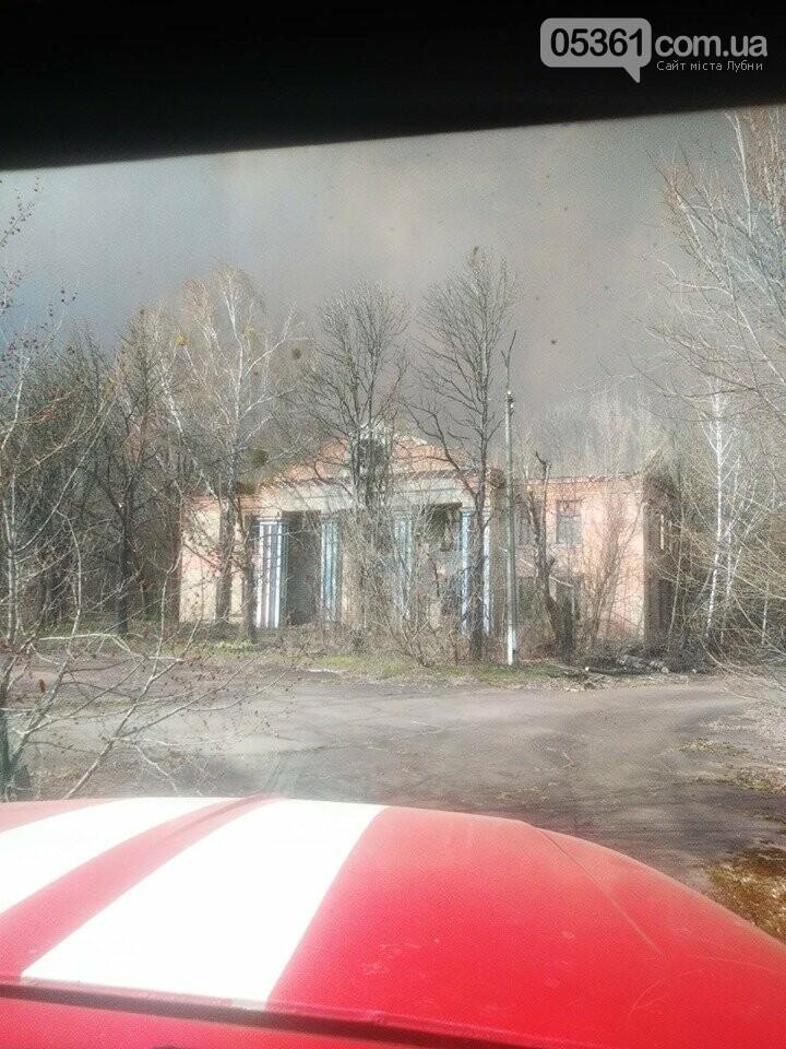 Лубенський пожежник Вадим Сердюк розповідає про ліквідацію пожежі в Чорнобильській зоні, фото-13