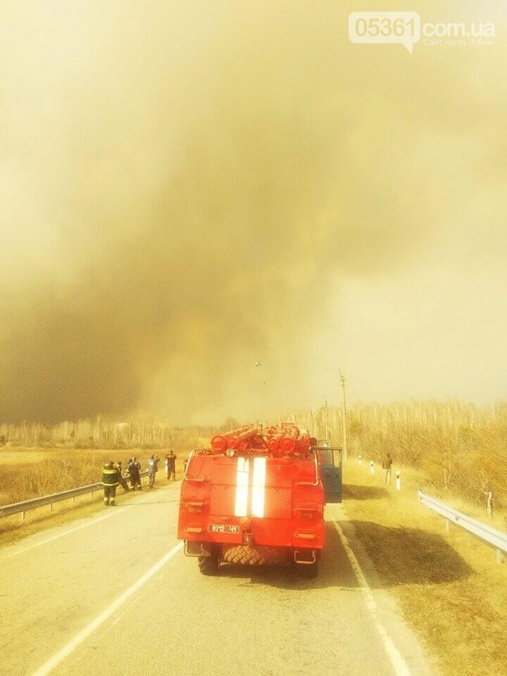 Лубенський пожежник Вадим Сердюк розповідає про ліквідацію пожежі в Чорнобильській зоні, фото-2