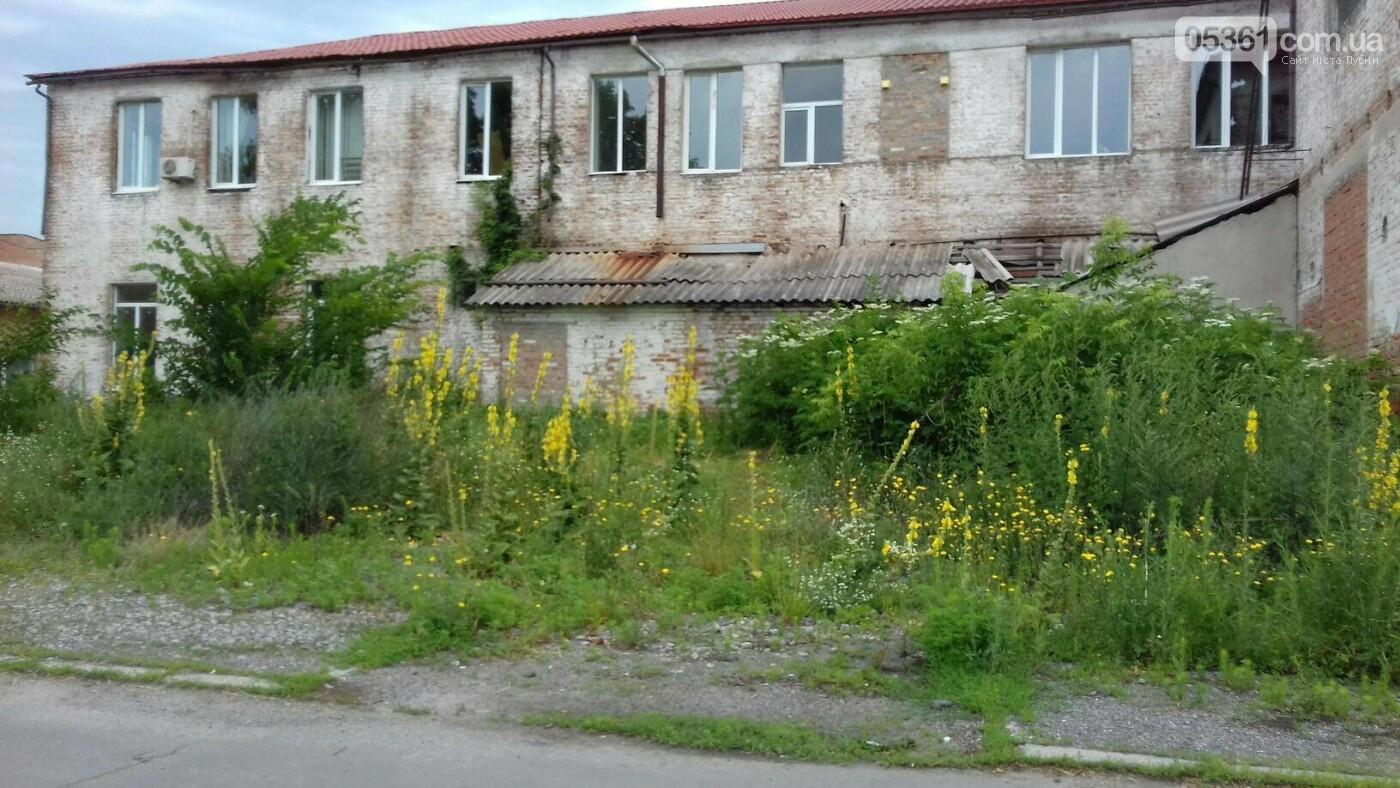 Лубни радянські , фото-8