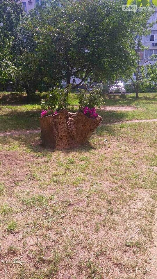 В одному з мікрорайонів Лубен буде свій парк, фото-8