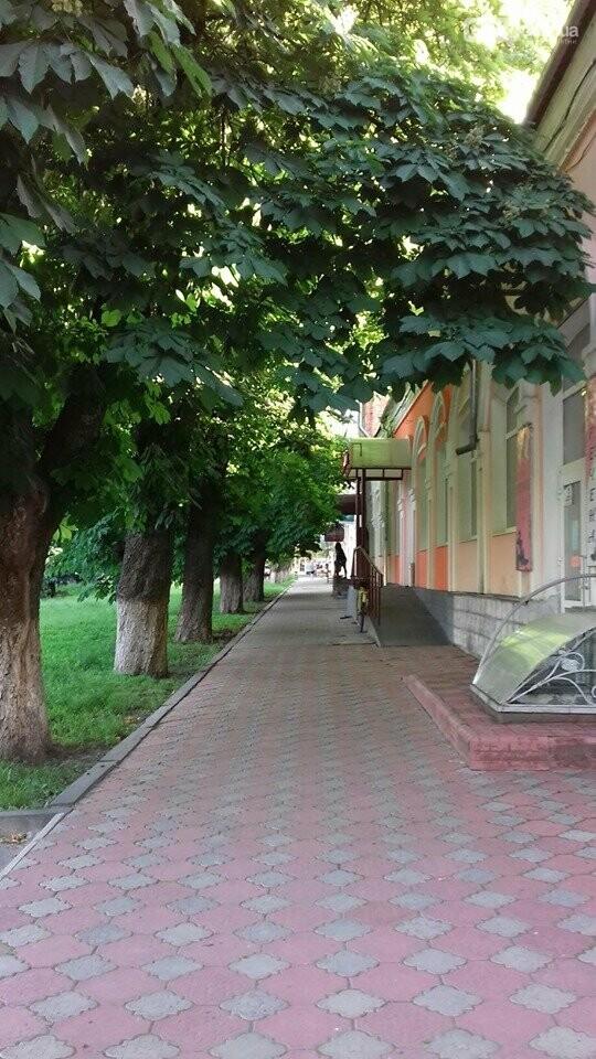 Лубенське літо, фото-6