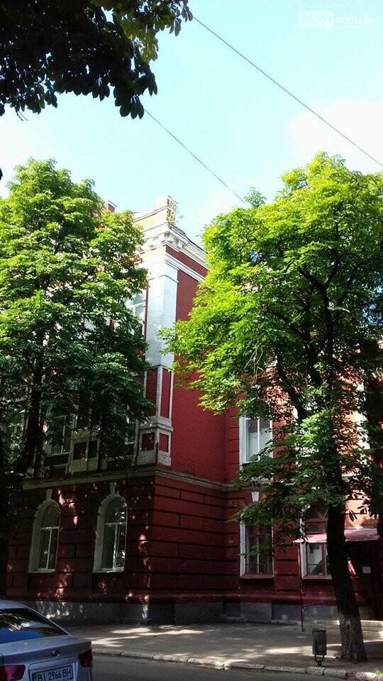 Лубенське літо, фото-10