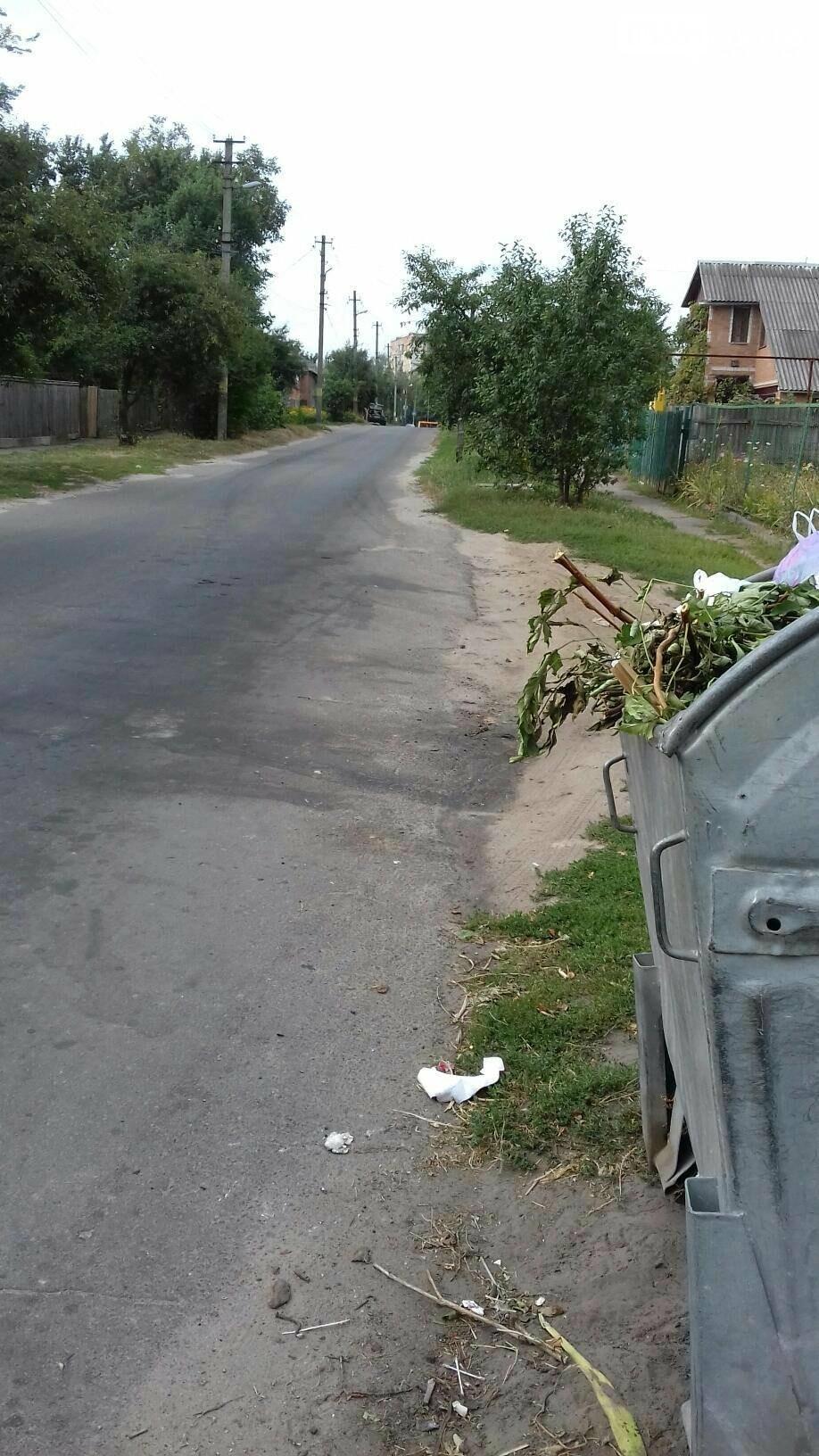 Плюси та мінуси чистого міста Лубни, фото-8