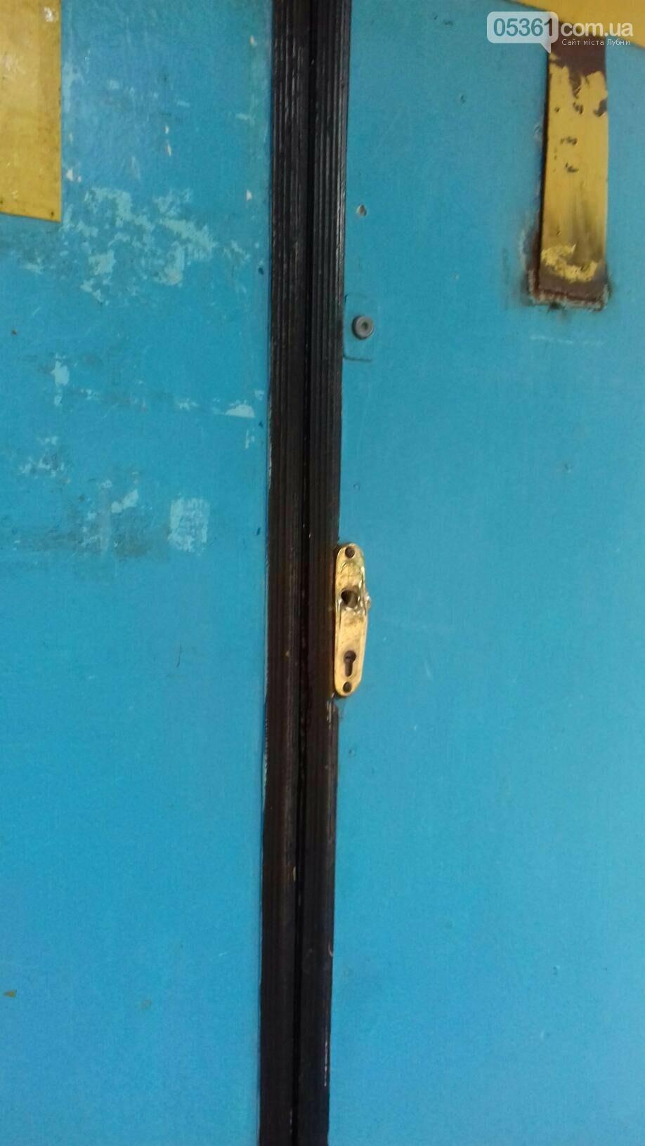 Жахливий акт вандалізму в Лубнах, фото-5