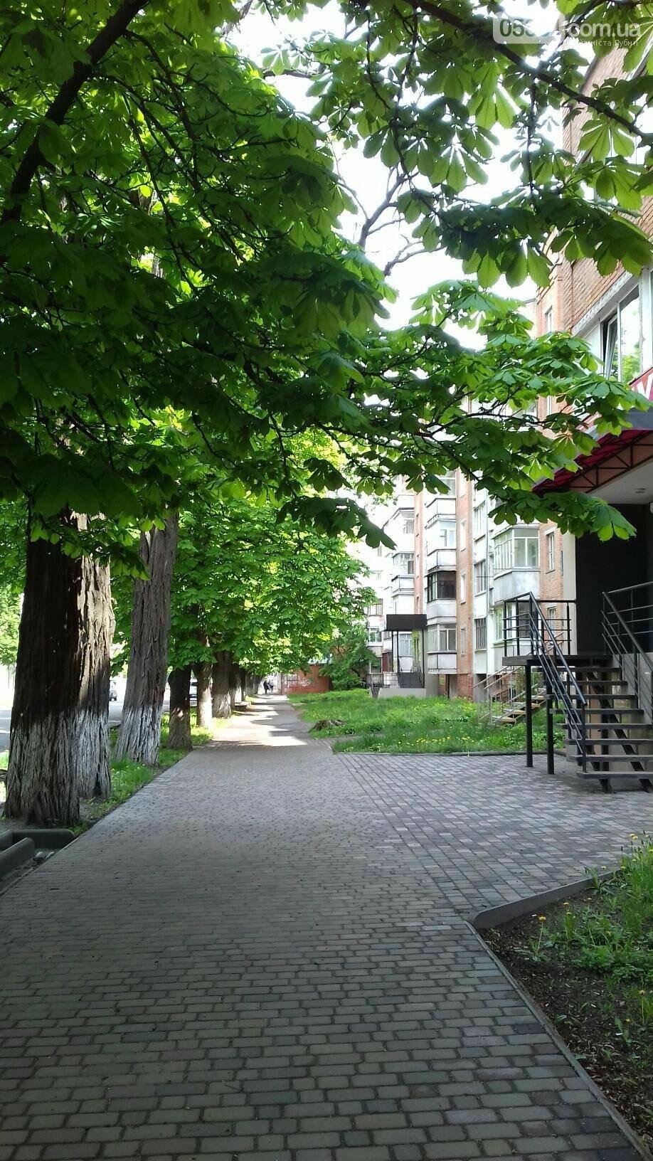 Лубни - місто контрастів , фото-6