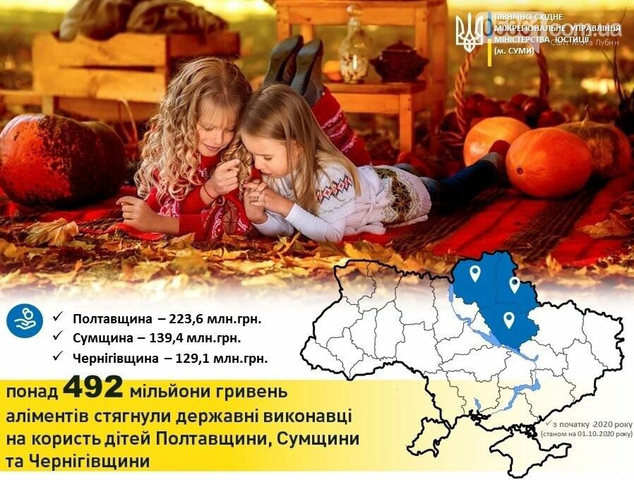 Майже 224 млн грн аліментів повернули державні виконавці дітям Полтавщини, фото-1
