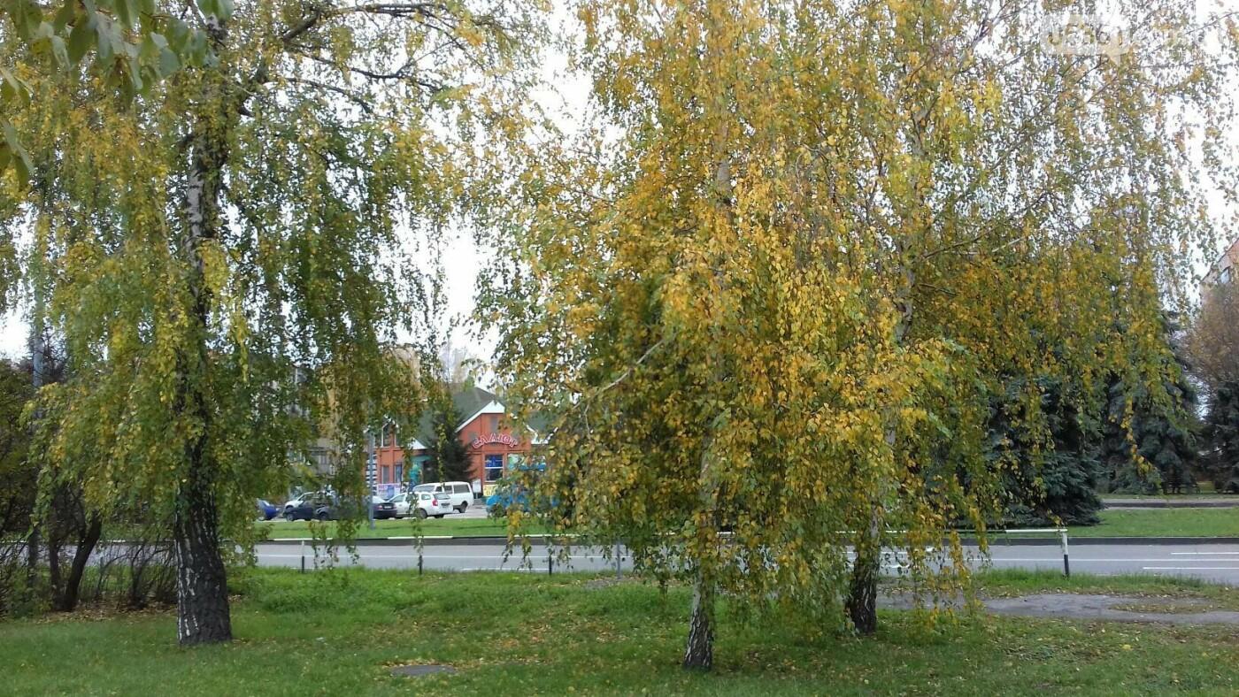 Листопад господарює в Лубнах, фото-6