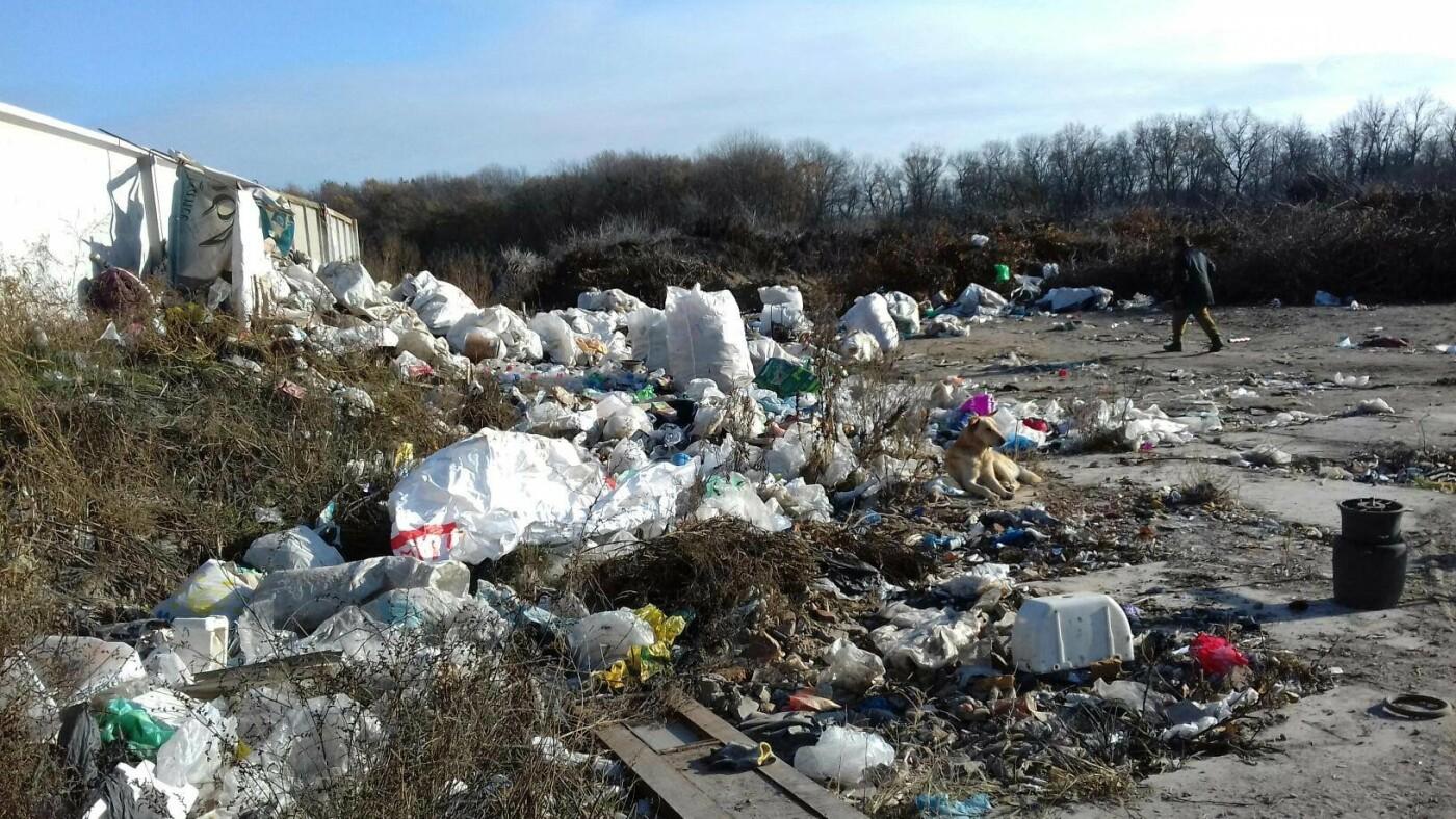 Як сортують сміття на лубенському сміттєзвалищі , фото-3