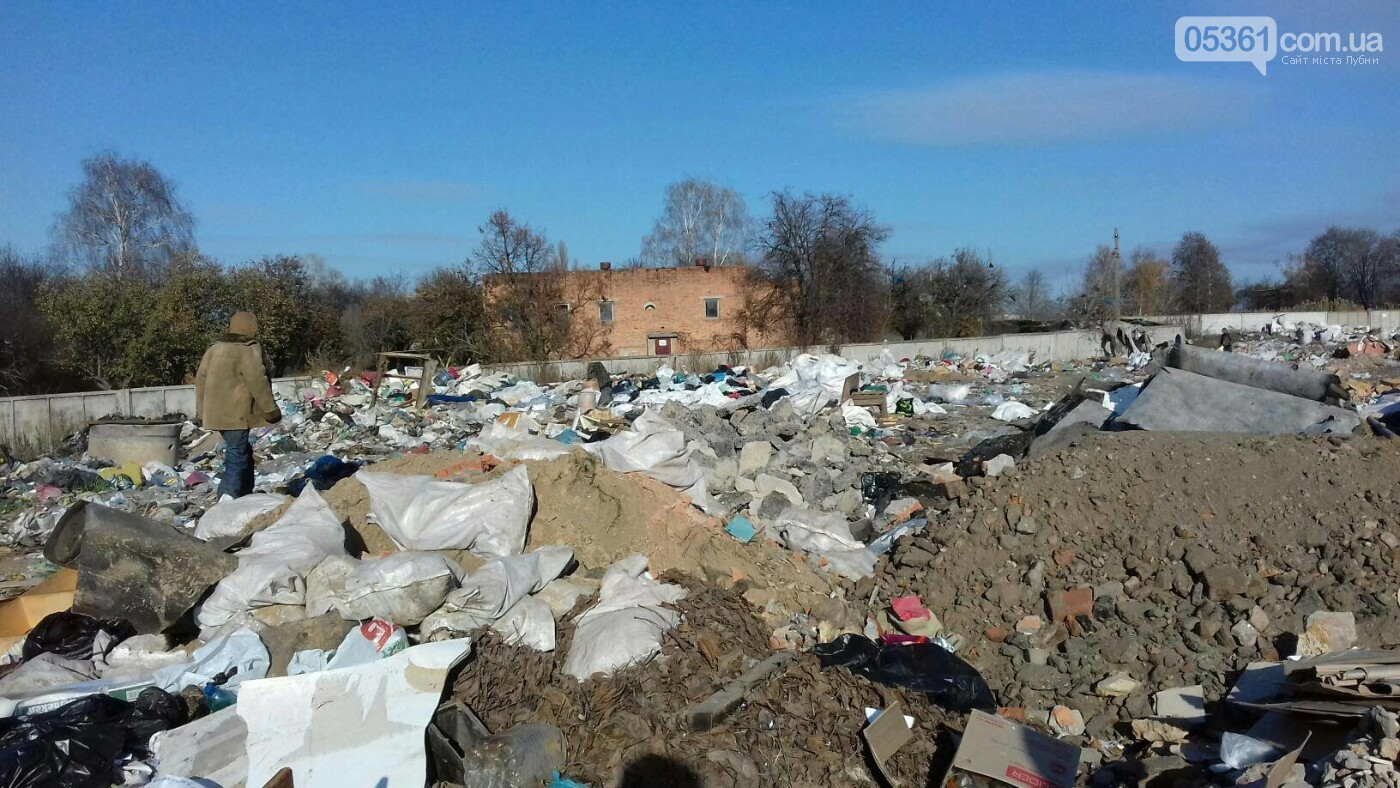 Як сортують сміття на лубенському сміттєзвалищі , фото-6