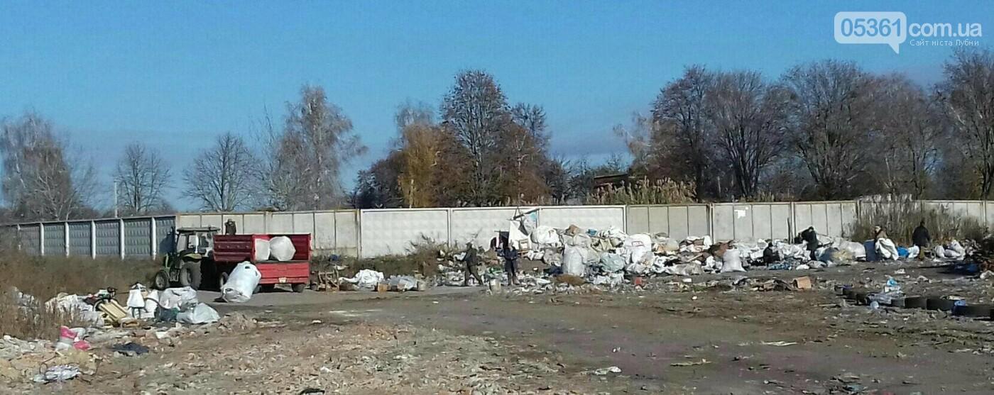 Як сортують сміття на лубенському сміттєзвалищі , фото-5