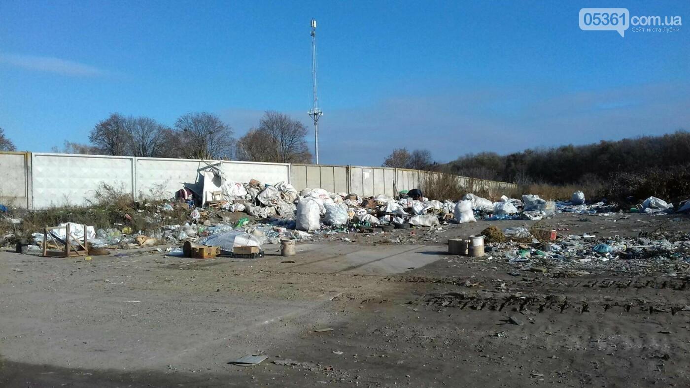 Як сортують сміття на лубенському сміттєзвалищі , фото-1