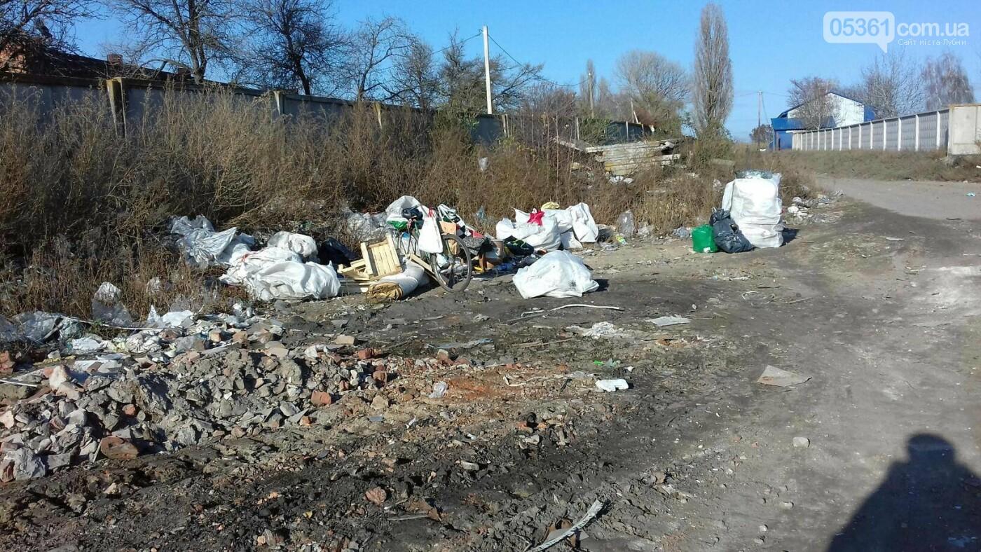 Як сортують сміття на лубенському сміттєзвалищі , фото-7